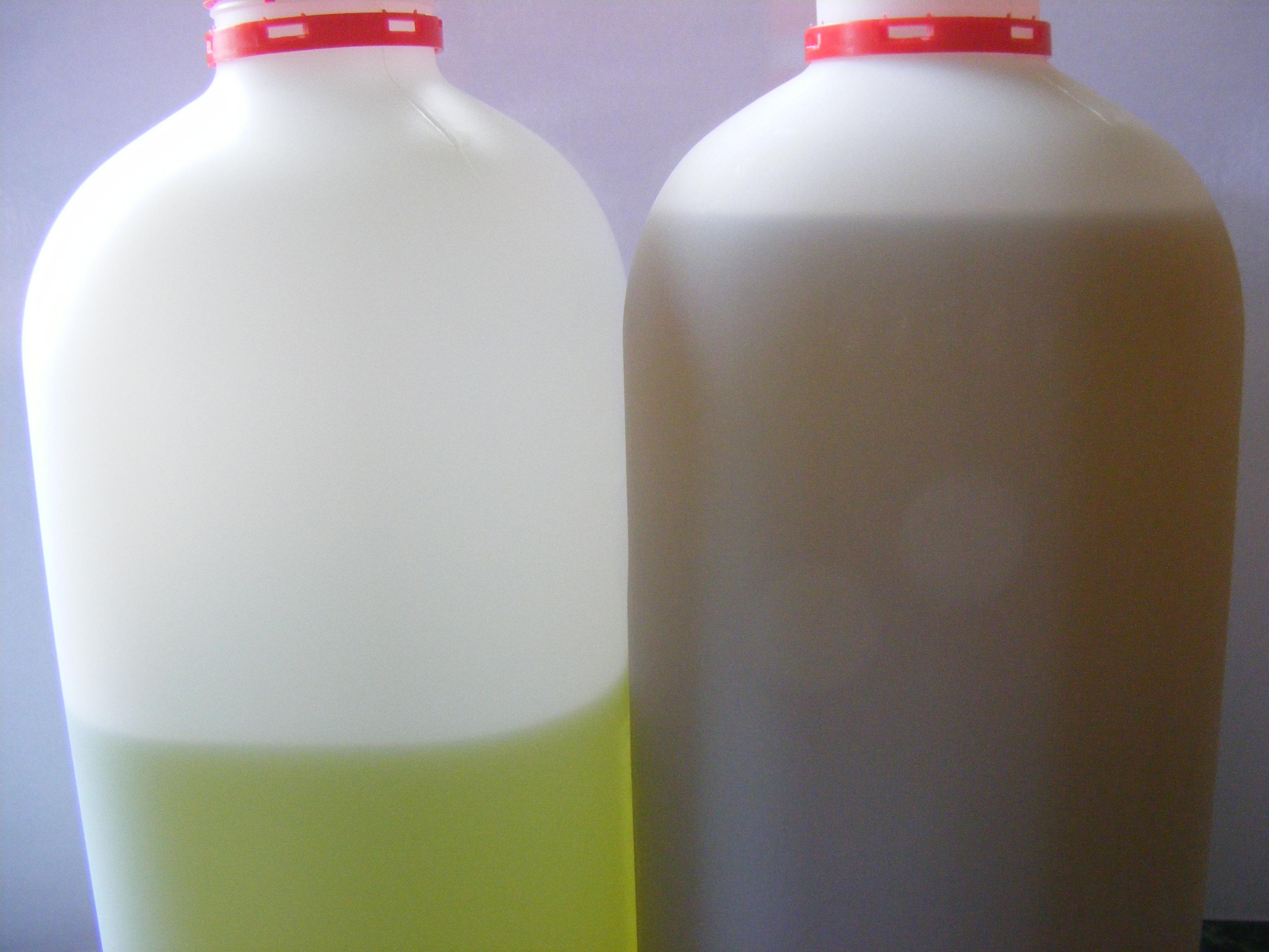 Thc/Cbd Oils